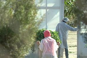 lavoro nelle farm australiane