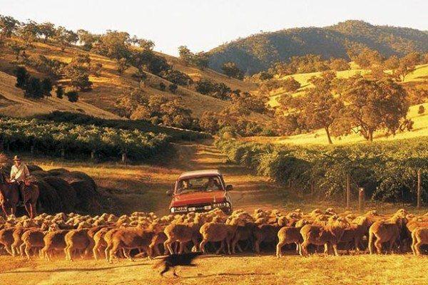 lavoro nelle farm Australia